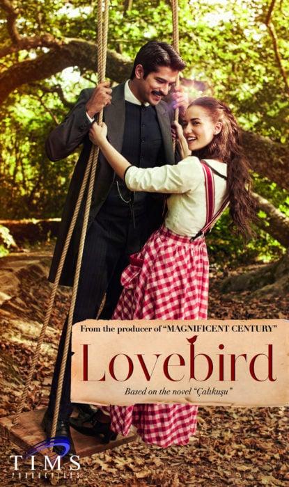 Poster de la serie de Netflix Lovebird. Pareja de novios balanceándose en un columpio