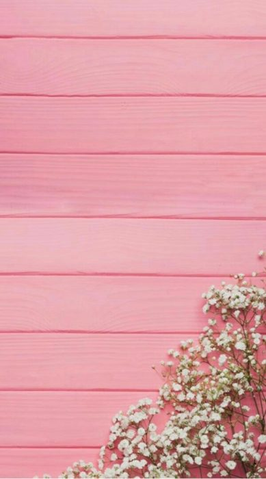 Cute Wallpapers for Phone inspired by white flowers