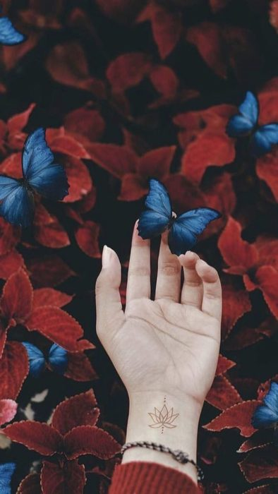 Wallpaper for cell phone with pink flowers and a hand holding a butterfly