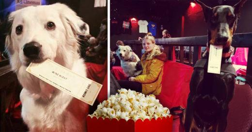 El mejor amigo del hombre ya puede ir al cine