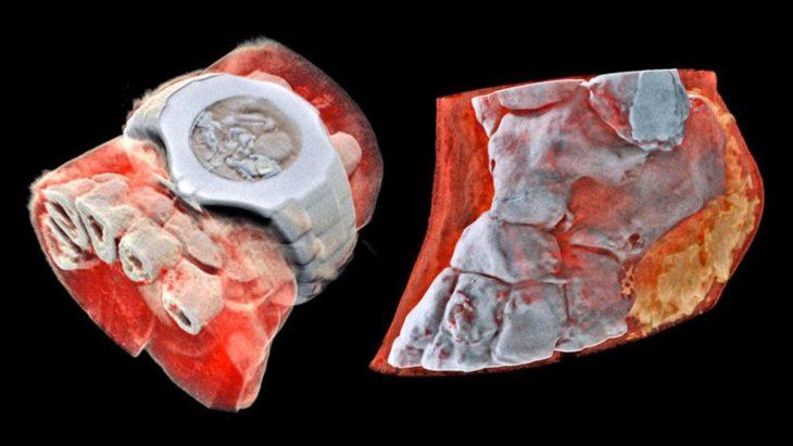 fotografía de dos cortes realizados con el nuevo scánner que hace radiografías a color y 3D