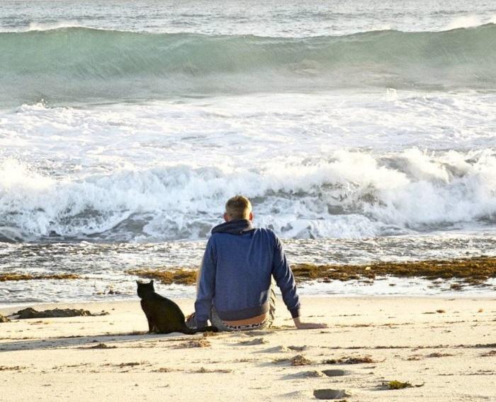 Rich y Willow sentados a la orilla del maro, apreciando las olas