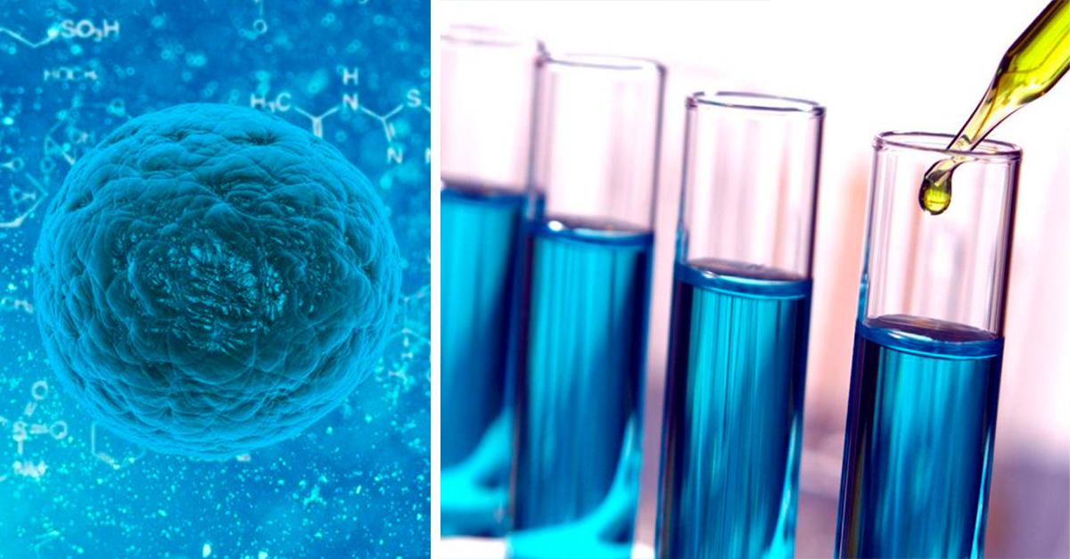 Inmunoterapia, una nueva alternativa para tratar el cáncer