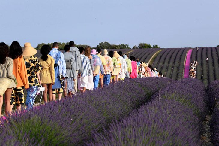 Modelos de la pasarela de Jacquemus caminando por una alfombra rosa entre los campos de lavanda