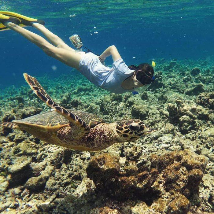 Chica buceando con tortugas bajo el mar