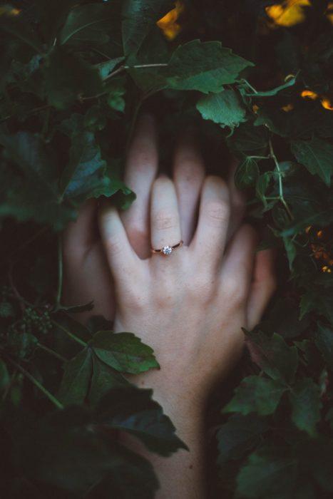 Manos de novios entrelazadas entre arbustos