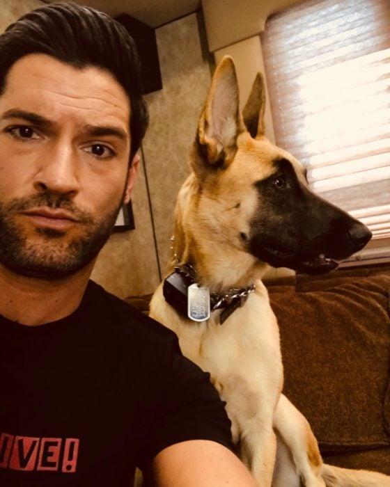 Actor de serie de Netflix, Lucifer, Tom Ellis; hombre de barba con un perro pastor alemán