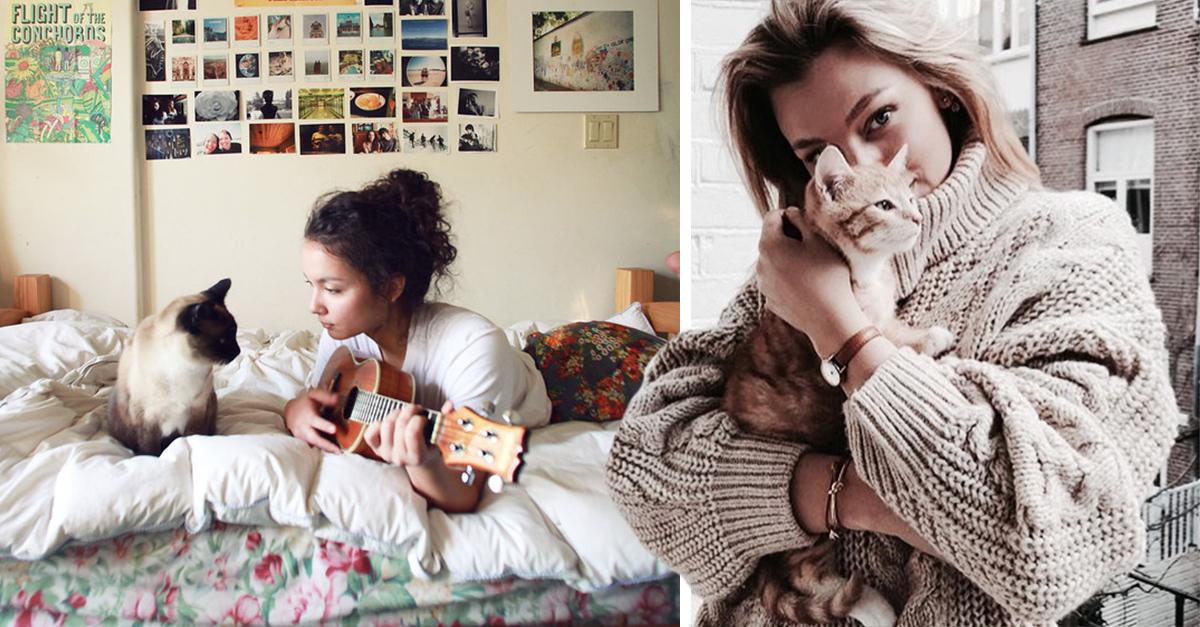 Estudios confirman relación entre la personalidad de los gatos y sus dueños