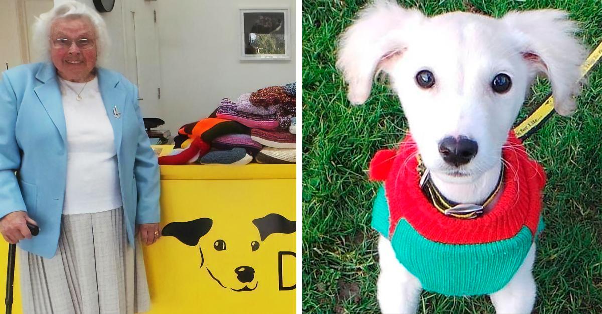 Mujer de 89 años teje 450 mantas para perros de un refugio