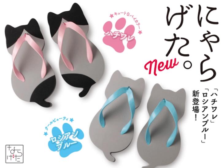 Sandalias e forma de gato con colores grises, azules y negras