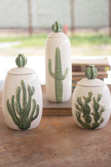 Azucarera con cactus