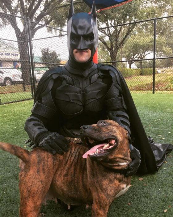 Chris Van Dorn se disfraza de batman para rescatar animales; perro pitbull
