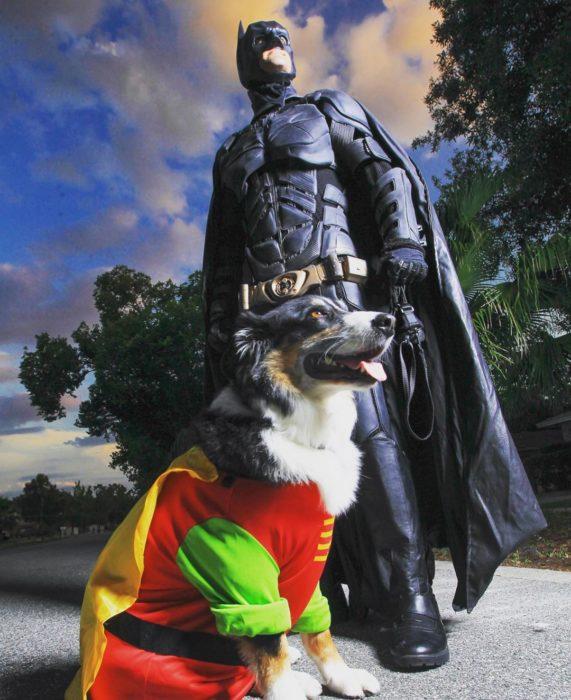 Chris Van Dorn se disfraza de batman para rescatar animales con su perro vestido de Robin