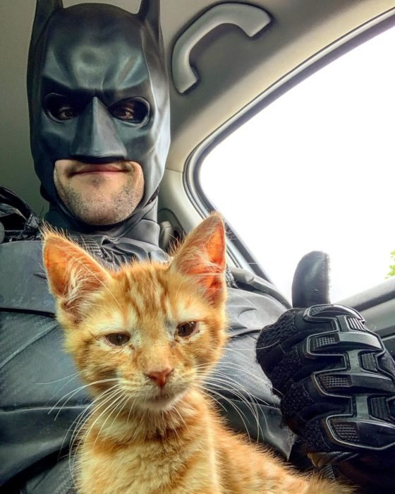 Chris Van Dorn se disfraza de batman para rescatar animales; gato anaranjado