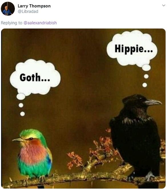 Hermanas se vuelven virales por ser opuestas; meme de pájaro gótico y hippie