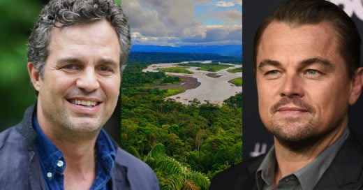 Leo DiCaprio y Mark Ruffalo se unen a la causa de defender la Amazonia