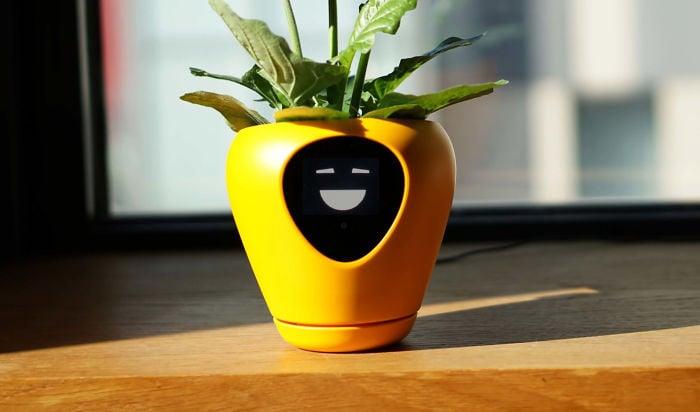 Maceta electronica en tono amarillo, sobre una mesa de madera, con emoji feliz al centro