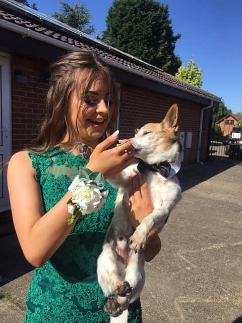 Mujer sosteniendo un perro de raza pequeña