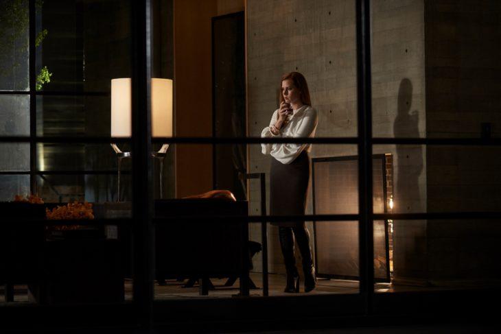 Películas sobre la mente humana; Animales nocturnos con Amy Adams como Susan Morrow