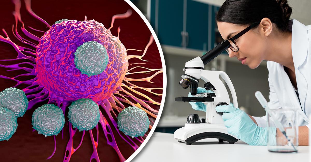 Bacterias programadas para matar al cáncer serían nueva opción de tratamiento de esta enfermedad