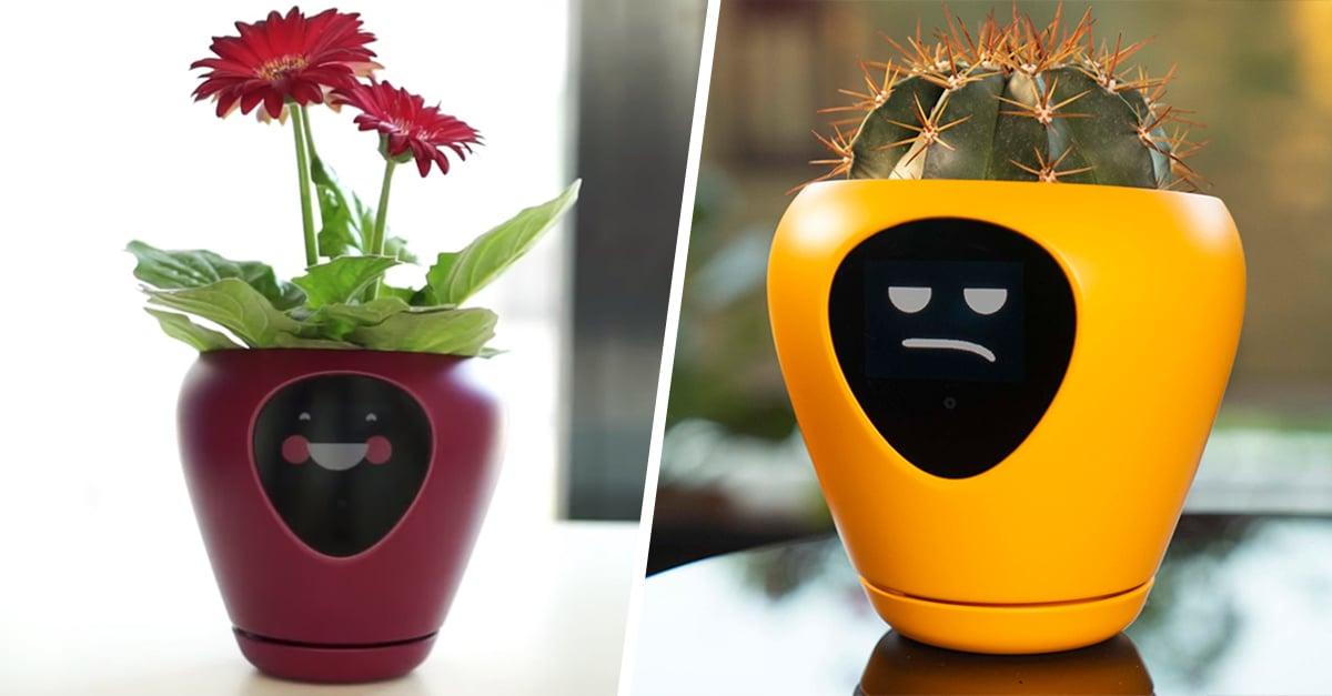 Esta maceta convierte tus plantas en un tamagotchi de la vida real