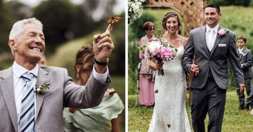 boda mariposas homenaje