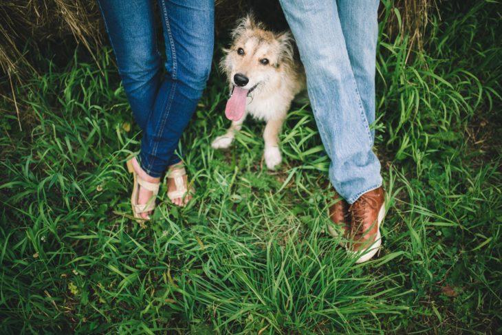Perro en medio de los pies de mujer y hombre