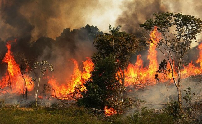 Foto real del incendio en la Amazonia