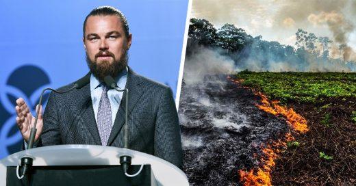 Leonardo DiCaprio dona 5 millones de dólares para apoyar por incendios en la Amazonia