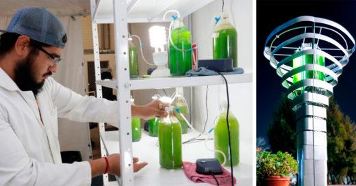 Mexicanos purifican el aire con algas