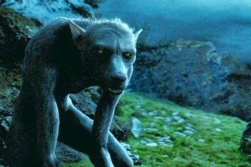 El profesor Remus Lupin convertido en hombre lobo