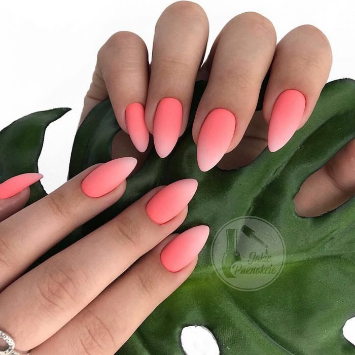 Uñas de color rosa con degradado a blanco