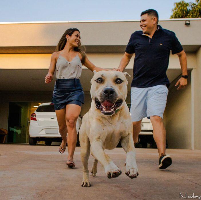 Pareja de novios tomados de las manos mientras caminan y corren atrás de su perro