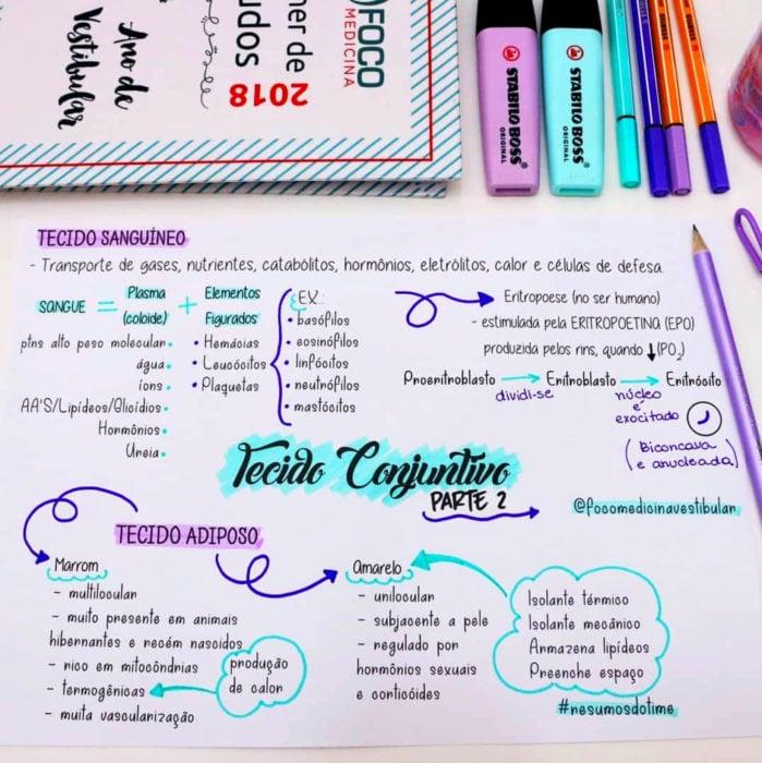 Apuntes bonitos en libretas para estudiar en la escuela; mapa mental creativo