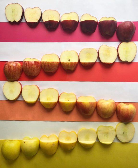 Manzanas acomodadas por gama de colores