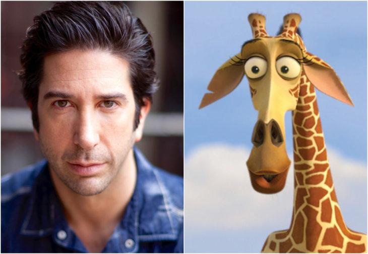 David Schwimmer, Melman, Madagascar, película, Disney