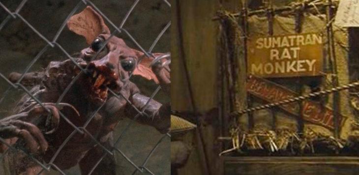 Escena de la película Braindead y King Kong ambas transportan a un mono de sumatra