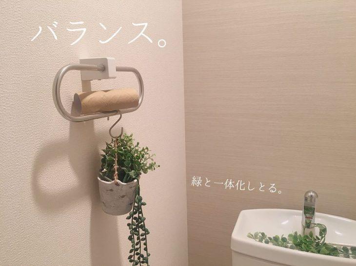 Rollo de papel en planta