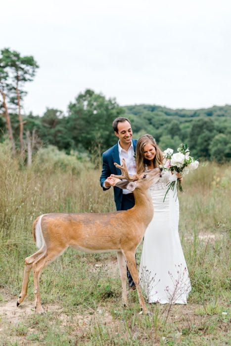 la novia le acerca el ramo al ciervo que lo prueba de nuevo