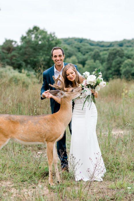 el ciervo muerde el ramo de la novia