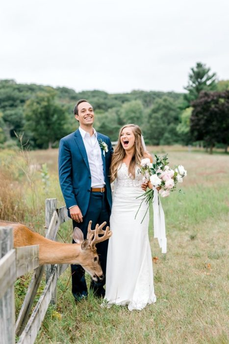 el ciervo va a cruzar la cerca para cercarse al ramo