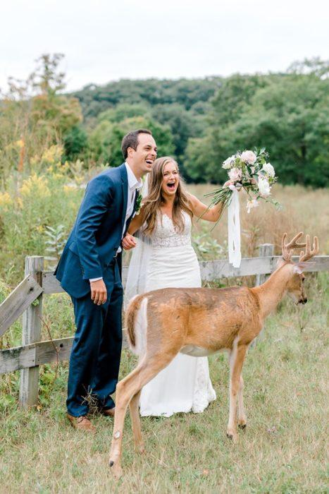 el ciervo se coloca frente a la novia siguiendo el ramo