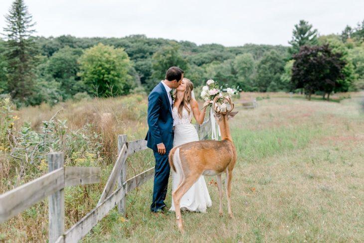 mientras los novios se dan un beso el ciervo alcanza el ramo estirando su cuello