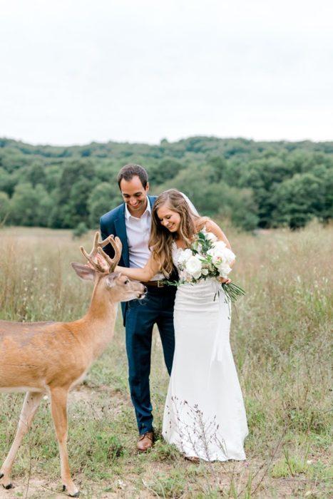 La novia toca al ciervo y este se mantiene tranquilo