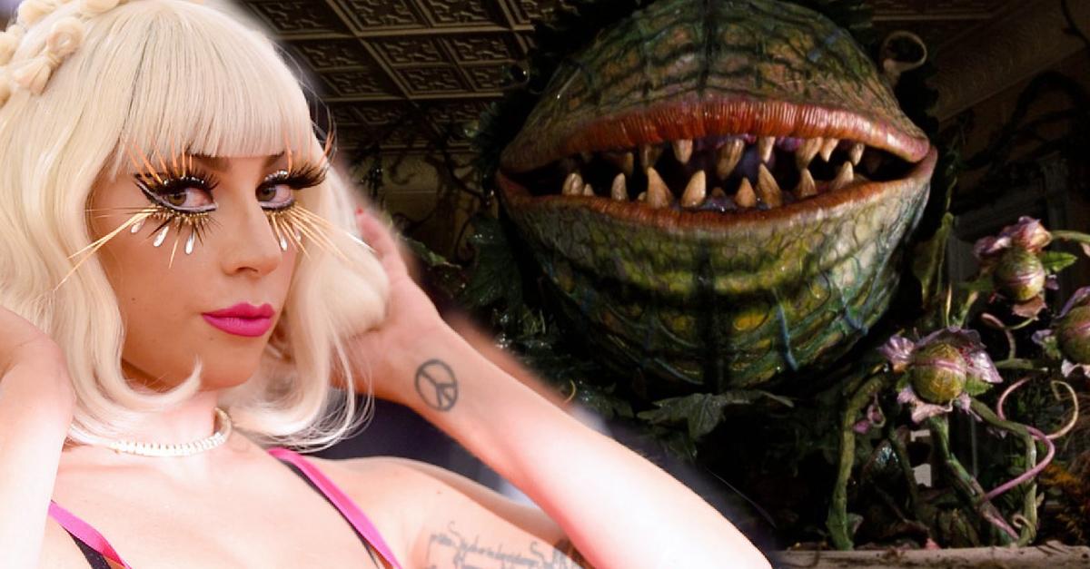Lady Gaga podría regresar a la actuación con una película de terror: 'Little Shop of Horrors'