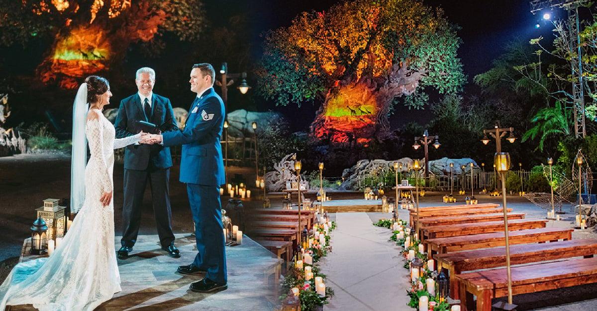 He aquí la boda perfecta: en Disney's Animal Kingdom, bajo el Árbol de la Vida y rodeada de vida silvestre