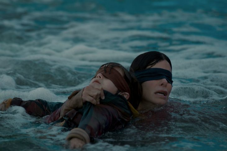 Bird Box a ciegas
