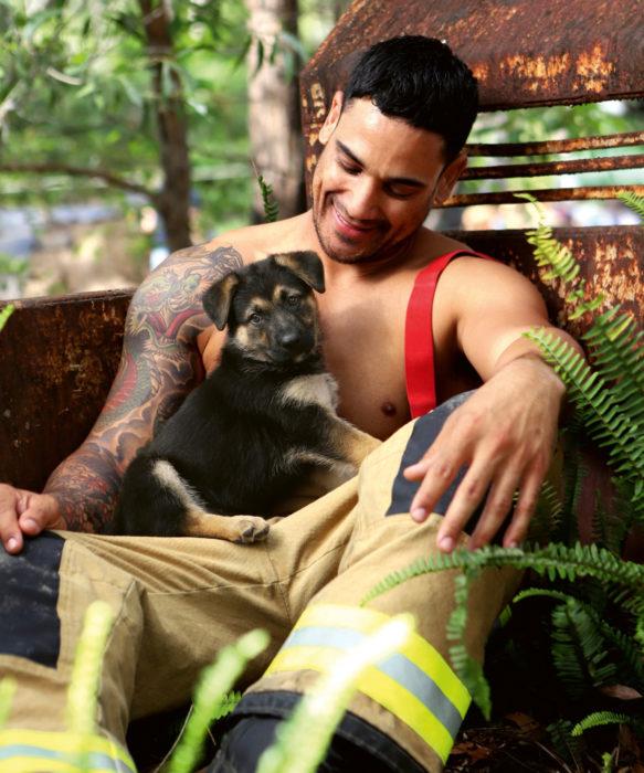 Calendario de bomberos australianos con animales; hombre con tatuaje de dragón japonés en el brazo con perro cachorro cruza de pastor alemán