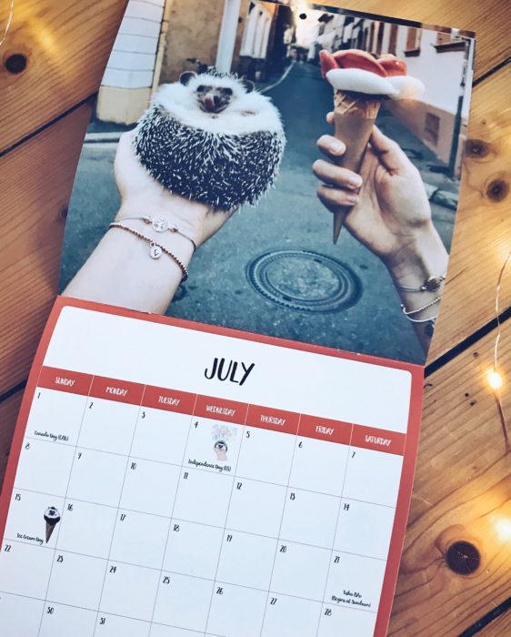 Mr. Pokee calendario