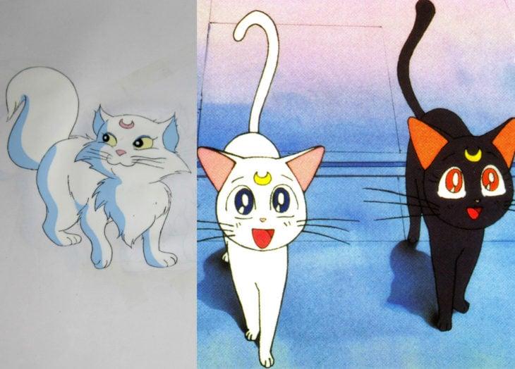 Versión americana de Sailor Moon; Luna y Artemis